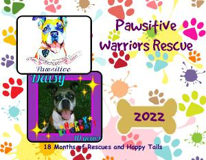 Pawsitive Warriors Rescue Calendar
