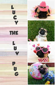 LUCY THE LUV PUG NOTEBOOK