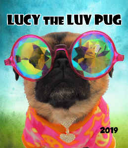 LUCY THE LUV PUG  *2019*  CD CASE CALENDAR