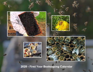 First Year Beekeeping Calendar