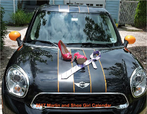 2017 Marlin and Shoe Girl Calendar