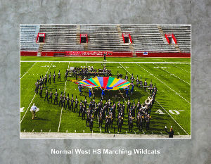 Normal Community HS Marching Wildcats