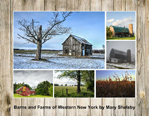 Barns and Farms of Western New York