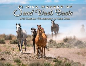 2021 Sand Wash Basin Wall Calendar