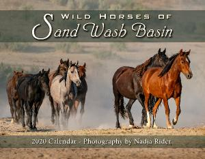 2020 Wild Horses of Sand Wash Basin Wall Calendar