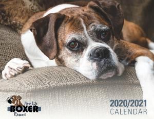New Life Boxer Rescue Calendar