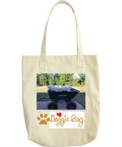 Golden Doggie Bag