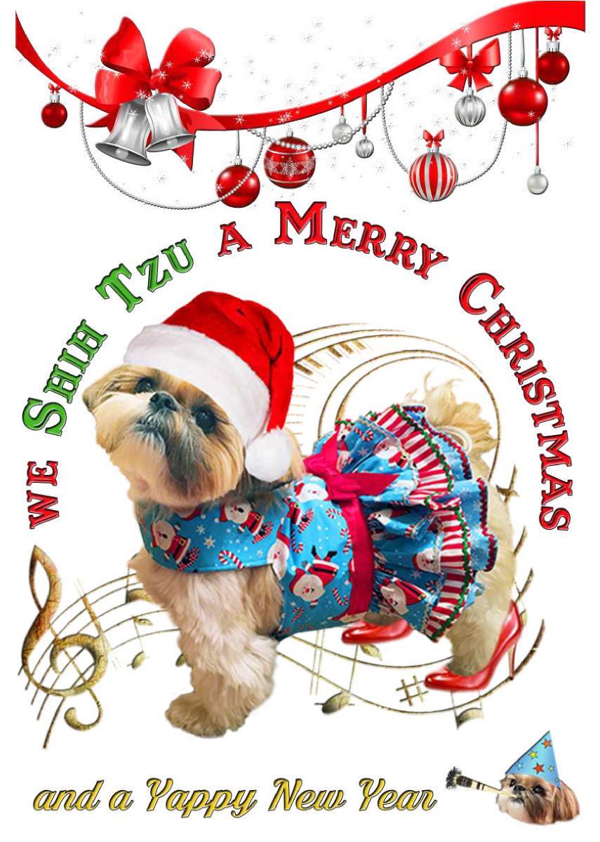 Shih Tzu a Merry Xmas Card - Create Photo Calendars
