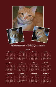 Butterscotch poster calendar