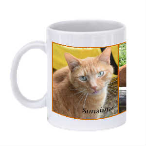 Sunshine Mugs