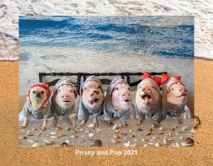 Prissy and Pop Calendar