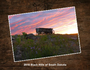 2018 Black Hills of South Dakota