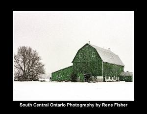South Central Ontario Photography
