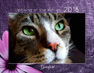 2018 Cats of Uprising of the Kitties Calendar