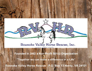 Roanoke Valley Horse Rescue Inc. 2020 Calendar
