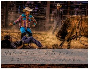 Western Rodeo Series #2 - by Ryan McGehee