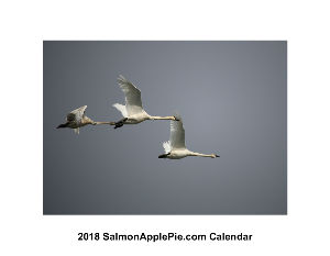 2018 Salmon Apple Pie Calendar