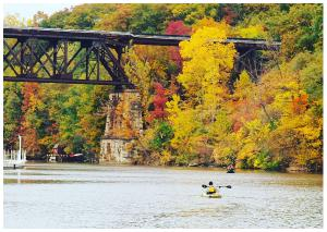 Fall Kayaker