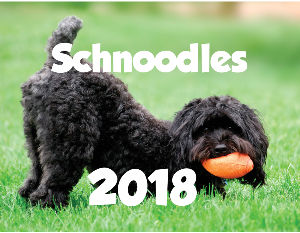Schnoodles ~*2018*~