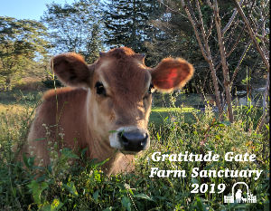 Gratitude Gate Farm Sanctuary Calendar 2019