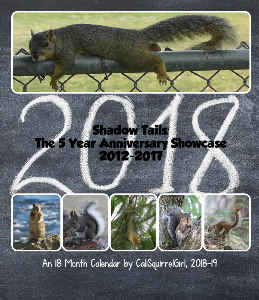 18 Month Squirrel Calendar 2018-2019