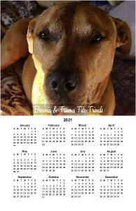 Brownie and Famous Fido Friends 2021 Poster