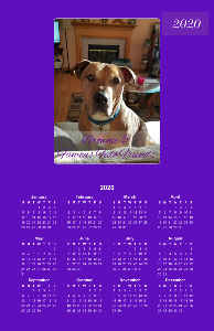 Brownie & Friends 2020 Poster Calendar 11x17