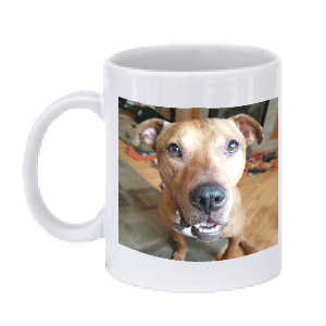 Brownie Coffee Mug With Two Pictures