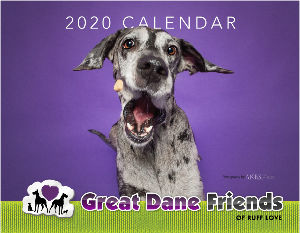 2020 Great Dane Friends Calendar