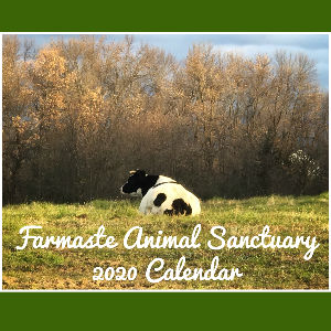 Farmaste Animal Sanctuary 2020