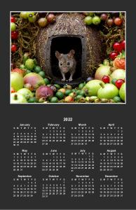George the mouse poster calendar
