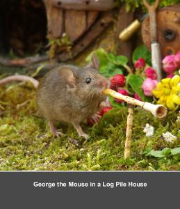 George the Mouse in a Log Pile House  cd calendar