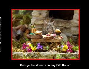 George the Mouse in a Log Pile House  photo book
