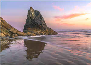 Photo Card - Rock of the Oregon Coast
