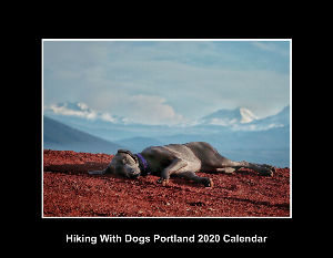 Hiking With Dogs Portland 2020 Calendar