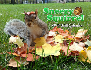 Sneezy The Squirrel 2019 Calendar