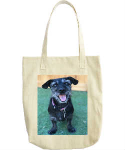 Hazel Grace Summer Smile Tote