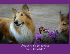 FREEDOM COLLIE RESCUE 2018 CALENDAR