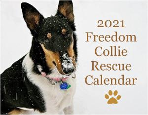 Freedom Collie Rescue Calendar 2021