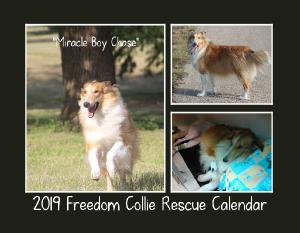 2019 FREEDOM COLLIE RESCUE CALENDAR