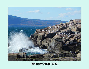 Mainely Ocean - 2020