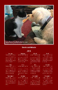 SPF Stevie and Miracle Poster Calendar 3