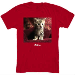 Zaine on Couch T-Shirt