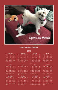 SPFs Miracle and Stevie Poster Calendar