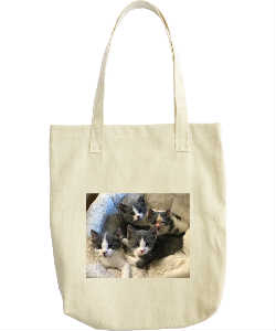 The Quadruplets Tote