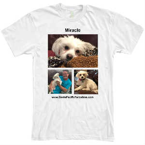 SPF Miracle White T-Shirt