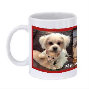 SPFs Miracle, Summer and Axle Coffee Cup