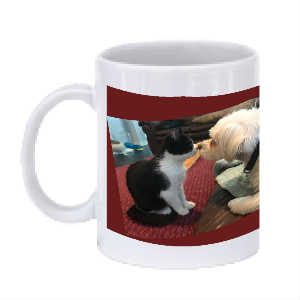SPF Stevie and Miracle Coffee Mug 3