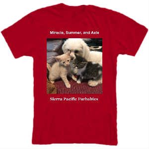 SPFs Miracle, Summer, and Axle T-Shirt