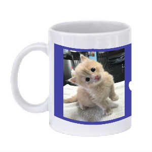 SPFs Winter Coffee Mug